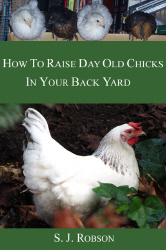 Cover photo of book on raising chickens